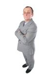 Man in grey suit posing Stock Image
