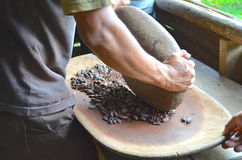 Man grinding cacao beans Royalty Free Stock Images
