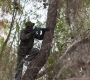 Man with a gun on a tree meets the enemy Stock Photo