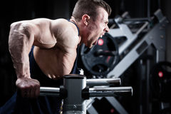 Man in gym at dip exercise Royalty Free Stock Photos