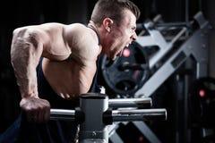 Man in gym at dip exercise Royalty Free Stock Photos