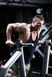 Man in gym at dip exercise Stock Images