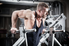 Man in gym at dip exercise. Bodybuilder man in gym doing dips as arm training Stock Photography