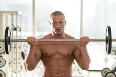 Man In The Gym Exercising Biceps With Barbell. Muscular Man Doing Heavy Weight Exercise For Biceps With Barbell Stock Photos