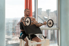 Man In The Gym Exercising Biceps With Barbell Stock Photography