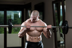 Man In The Gym Exercising Biceps With Barbell Royalty Free Stock Photography
