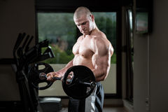 Man In The Gym Exercising Biceps With Barbell Royalty Free Stock Photo