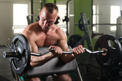 Man In The Gym Exercising Biceps With Barbell Stock Images