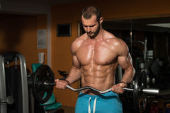 Man In The Gym Exercising Biceps With Barbell. Young Athlete Doing Heavy Weight Exercise For Biceps Royalty Free Stock Photography