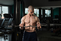 Man In The Gym Exercising Biceps With Barbell Stock Photo