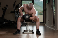 Man In The Gym Exercising Biceps With Dumbbell Stock Images
