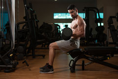 Man In The Gym Exercising Biceps With Dumbbell Royalty Free Stock Photography