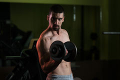 Man In The Gym Exercising Biceps With Dumbbell Royalty Free Stock Images
