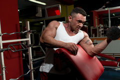 Man In The Gym Exercising Biceps With Dumbbells Stock Photos