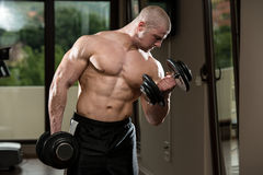Man In The Gym Exercising Biceps With Dumbbells Royalty Free Stock Photos
