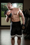Man In The Gym Exercising Biceps With Dumbbells Royalty Free Stock Image