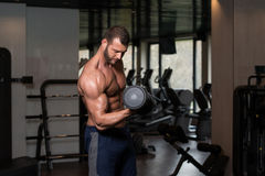 Man In The Gym Exercising Biceps With Dumbbells Stock Image