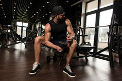 Man In The Gym Exercising Biceps With Dumbbells Stock Photo