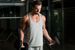 Man In The Gym Exercising Biceps With Dumbbells. Young Athlete In Gym Exercising With Dumbbells Royalty Free Stock Photography