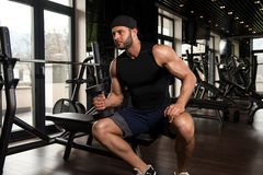 Man In The Gym Exercising Biceps With Dumbbells. Young Athlete In The Gym Performing Biceps Curls With A Dumbbells Royalty Free Stock Image