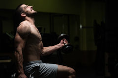 Man In The Gym Exercising Biceps With Dumbbells Royalty Free Stock Photography