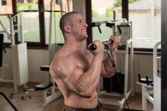 Man In The Gym Exercising Biceps On Machine Royalty Free Stock Photos