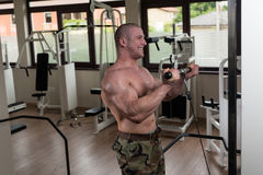 Man In The Gym Exercising Biceps On Machine Royalty Free Stock Image