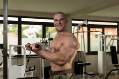 Man In The Gym Exercising Biceps On Machine Stock Images