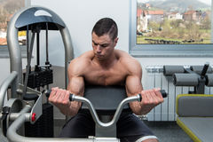 Man In The Gym Exercising Biceps On Machine. Young Athlete Doing Heavy Weight Exercise For Biceps On Machine Stock Photos