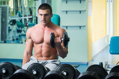Man at the gym Royalty Free Stock Image
