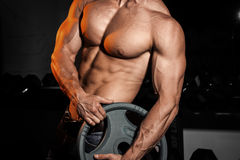Man in gym. Muscular bodybuilder guy doing exercises with barbell. Strong person with Tense male hand with veins barbell Royalty Free Stock Images
