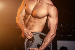 Man in gym. Muscular bodybuilder guy doing exercises with barbell. Strong person with Tense male hand with veins barbell. Modern journal toning. Flare for text Stock Image
