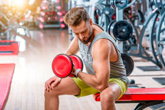 Man in the gym. Muscular man training with red dumbbell in the gym Royalty Free Stock Photos