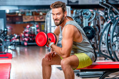 Man in the gym. Muscular man training with red dumbbell in the gym Royalty Free Stock Images