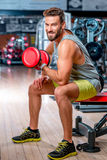 Man in the gym. Muscular man training with red dumbbell in the gym Royalty Free Stock Photo