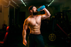 Man in the gym with shaker. Man in the gym drinking from the shaker Stock Photo