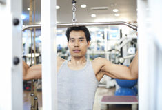 Man gym workout Royalty Free Stock Image