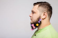 Man with hair clips on beard. Man portrait in profile with hair clips on long beard over gray background Stock Images