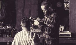 Man hairstylist. Hairdresser cutting hair of male client. Hairstylist serving client at barber shop. Man visiting royalty free stock photos