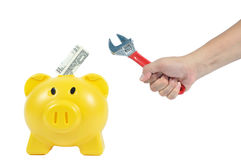 Man hand action with yellow piggy-bank, business concept Royalty Free Stock Images