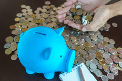 Man hand earn money from saving in piggy bank Stock Image