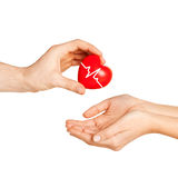 Man hand giving red heart to woman. Charity, health care, donation and medicine concept - men hand giving red heart with cardiogram to woman Royalty Free Stock Photography