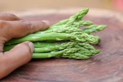 Man hand holding a bunch of fresh asparagus stock photography