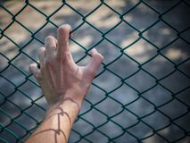 Man hand holding on chain link fence to remember Human Rights Da. Y concept royalty free stock photography