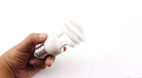 Man hand holding the LED Spiral Light Bulbs. Isolated Stock Photography