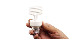 Man hand holding the LED Spiral Light Bulbs. Isolated Royalty Free Stock Photography