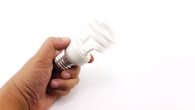 Man hand holding the LED Spiral Light Bulbs. Isolated Stock Image