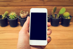 Man hand holding mobile phone blank screen with cactus and wood Stock Photography