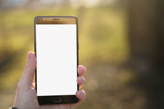 Man hand holding smartphone with white screen outdoors with spring blurred background Stock Photography