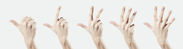 Man hand isolated on white background, one two three four five count by fingers.  Royalty Free Stock Images